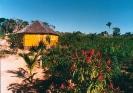 Igreja Céu do Mapiá