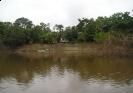 Rio do Ouro